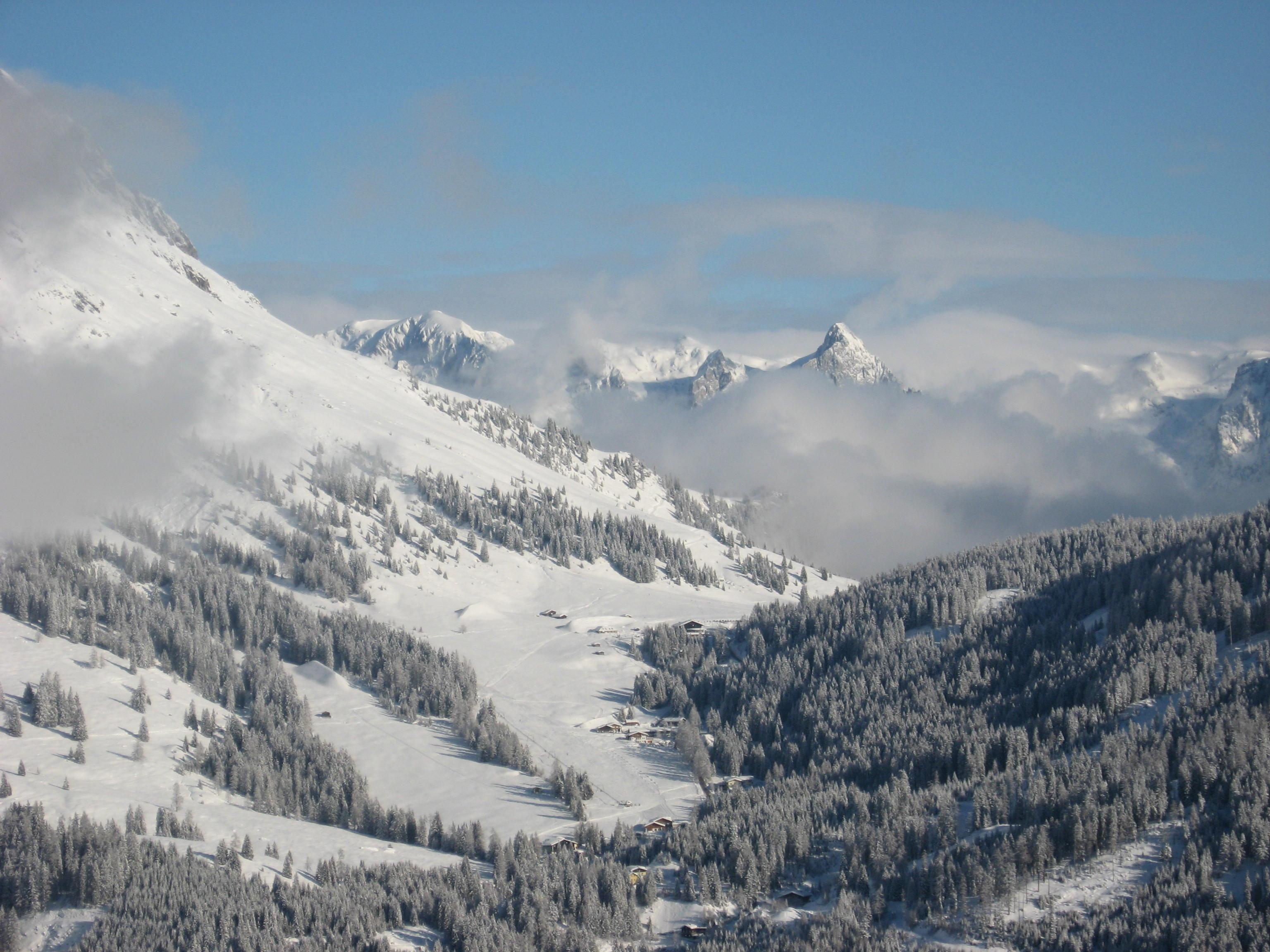 Хайде всички в Алпите